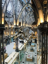 STEM Students Visit Oxford Natural History Museum